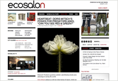 Ecosalon article